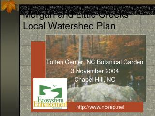 Morgan and Little Creeks Local Watershed Plan