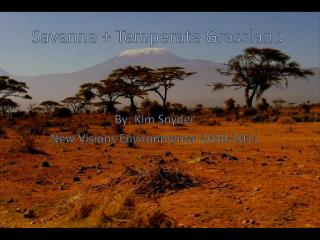 Savanna + Temperate Grassland