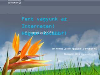 //  Internet és KKV-k