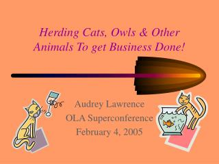 Herding Cats, Owls & Other Animals To get Business Done!