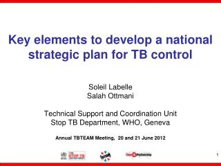Key elements to develop a national strategic plan for TB control