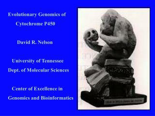 Evolutionary Genomics of       Cytochrome P450         David R. Nelson     University of Tennessee Dept. of Molecular Sc