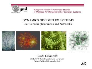 DYNAMICS OF COMPLEX SYSTEMS Self-similar phenomena and Networks
