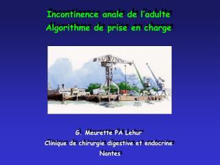 Incontinence anale de l'adulte Algorithme de prise en charge  G. Meurette PA Lehur