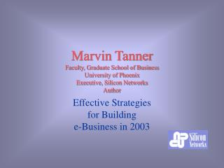 Effective Strategies  for Building  e-Business in 2003