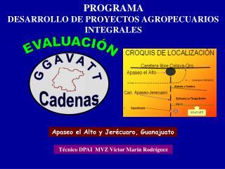 PROGRAMA  DESARROLLO DE PROYECTOS AGROPECUARIOS INTEGRALES