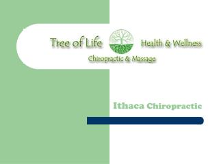 Chiropractor Ithaca Ny