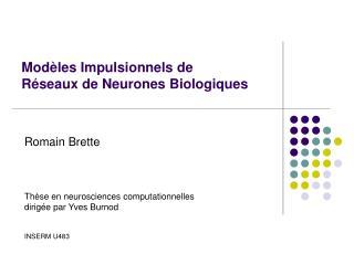Mod�les Impulsionnels de R�seaux de Neurones Biologiques