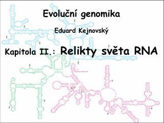 Evoluční genomika Eduard Kejnovský Kapitola II.: Relikty sv ět a  RNA