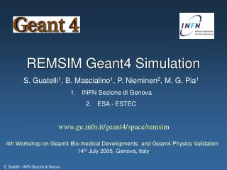 REMSIM Geant4 Simulation