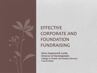 Effective Corporate and Foundation Fundraising