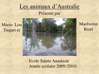 Les animaux d Australie