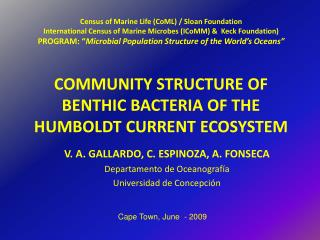 COMMUNITY STRUCTURE OF BENTHIC BACTERIA OF THE HUMBOLDT CURRENT ECOSYSTEM