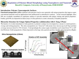 Introduction: Polymer Nanocomposite Surfaces