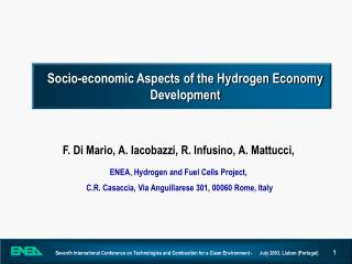 Socio-economic Aspects of the Hydrogen Economy Development