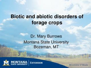 Biotic and abiotic disorders of forage crops