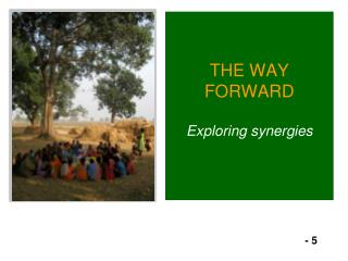 THE WAY FORWARD Exploring synergies