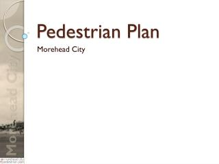 Pedestrian Plan