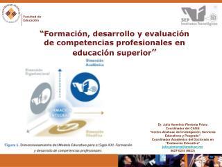 � Formaci�n, desarrollo y evaluaci�n de competencias profesionales en educaci�n superior �