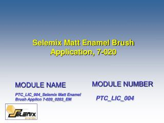 Selemix Matt Enamel Brush Application, 7-020