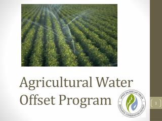Agricultural Water Offset Program