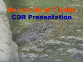 University of Florida  CDR Presentation