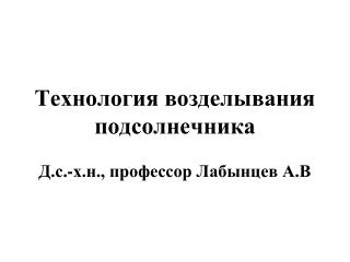 Технология возделывания подсолнечника  Д.с.-х.н., профессор Лабынцев А.В
