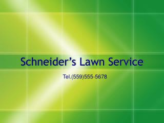 Schneider's Lawn Service
