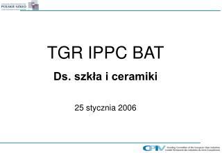 TGR  IPPC BAT Ds. szk?a i ceramiki 25 stycznia 2006