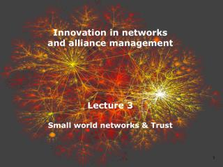 Innovation in networks  and alliance management Lecture 3 Small world networks & Trust