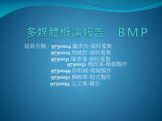 多媒體概論報告-BMP