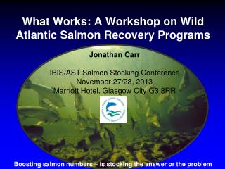 What Works: A Workshop on Wild Atlantic Salmon Recovery Programs