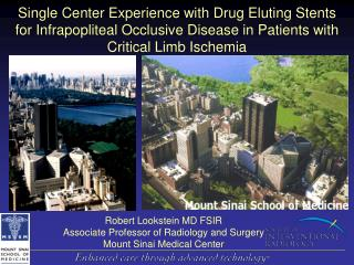 Single Center Experience with Drug Eluting Stents              for Infrapopliteal Occlusive Disease in Patients with Cri