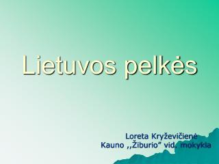 Lietuvos pelkės