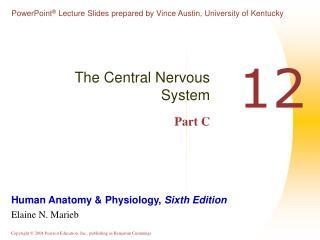 The Central Nervous System Part C