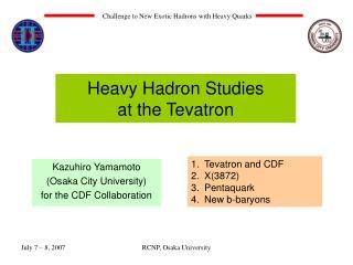 Heavy Hadron Studies  at the Tevatron