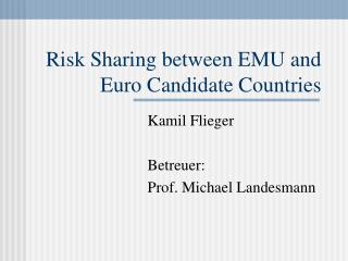 Risk Sharing between EMU and Euro Candidate Countries