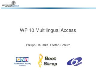 WP 10 Multilingual Access