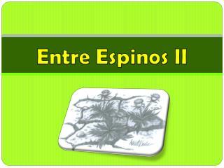 Entre Espinos  II