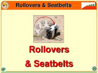 Rollovers & Seatbelts