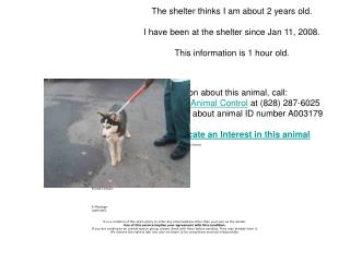 Email This Animal's Info to a friend