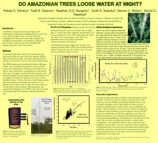 DO AMAZONIAN TREES LOOSE WATER AT NIGHT?