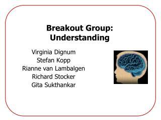 Breakout Group: Understanding