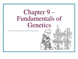 Chapter 9 – Fundamentals of Genetics
