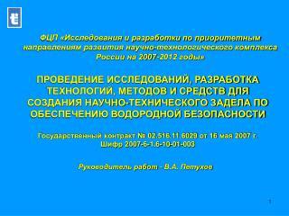 Руководитель работ - В.А. Петухов
