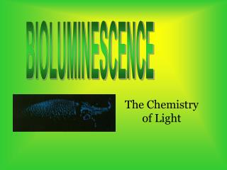 Bioluminescence is