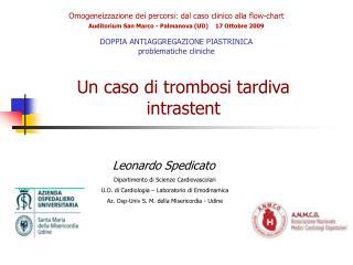 Omogeneizzazione dei percorsi: dal caso clinico alla flow-chart Auditorium San Marco - Palmanova UD    17 Ottobre 2009