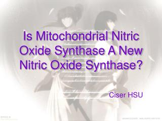 Is Mitochondrial Nitric Oxide Synthase A New Nitric Oxide Synthase?