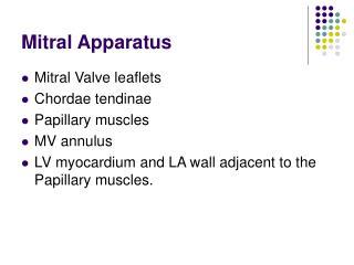 Mitral Apparatus