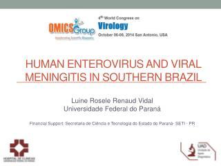 HUMAN enterovirus AND VIRAL MENINGITIS IN SOUTHERN BRAZIL